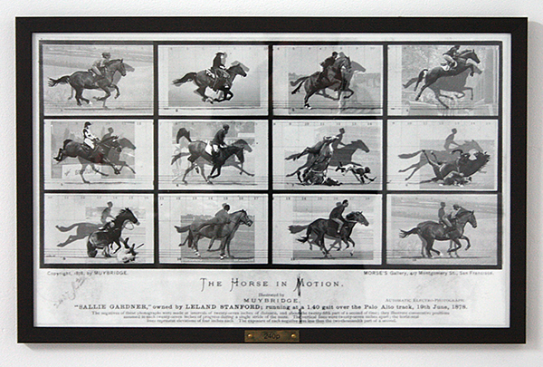 Sean Hannan - 240p - 37x60cm Goldfibre inkjet print