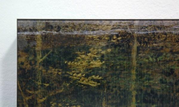 Tessa Verder - Blaue Blume 2 - 120x161cm Foto collage op dibond (detail)