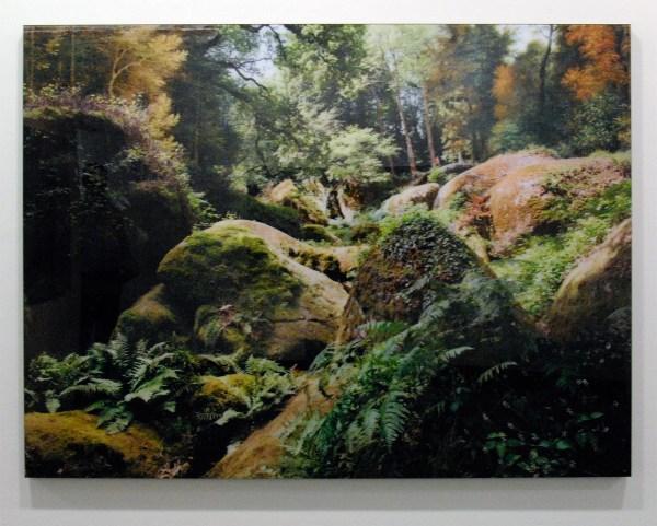 Tessa Verder - Blaue Blume 2 - 120x161cm Foto collage op dibond