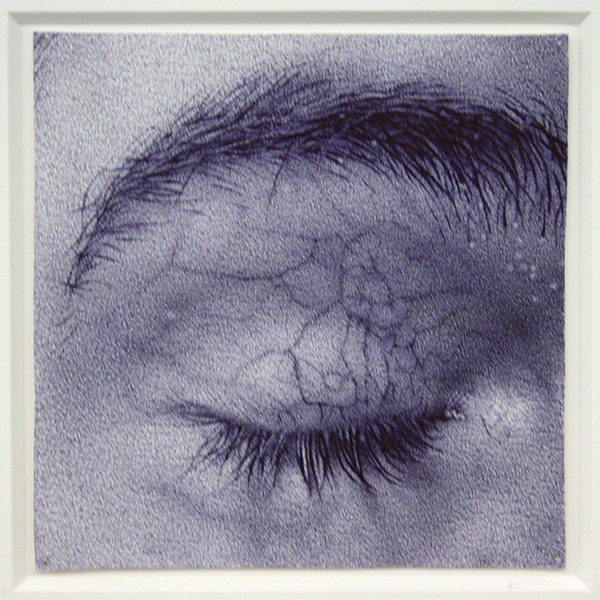 Wendy van der Hart - Zonder Titel (Huidstudies 01) - 28x22cm (inclusief de lijst!) Balpen op papier