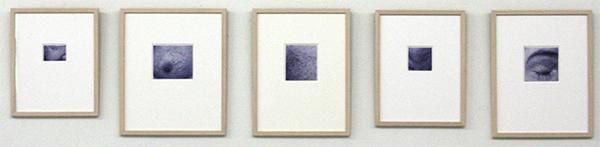 Wendy van der Hart - Zonder Titel (Huidstudies) - Balpen op papier