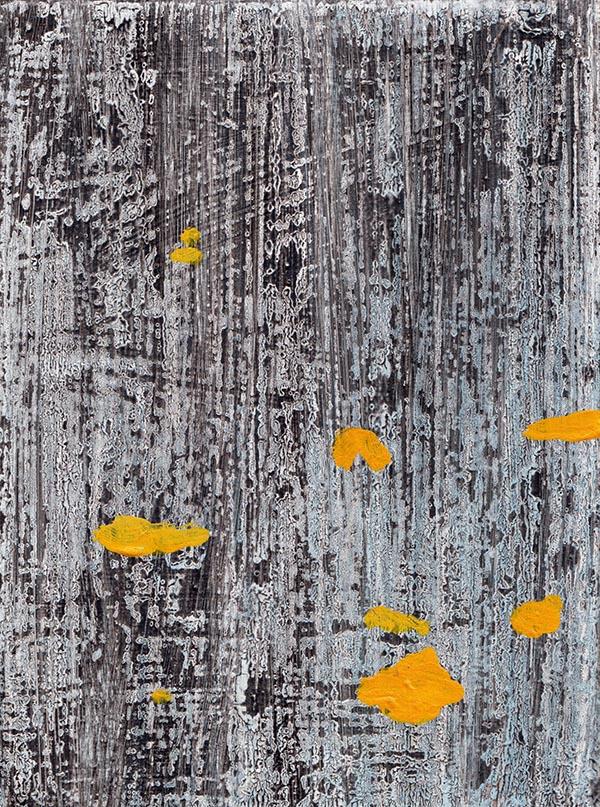 Giel Louws - Bark 2 - 18x24cm Acrylverf op canvas