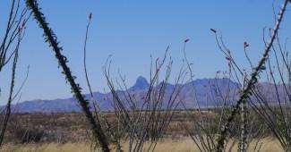 Southern AZ
