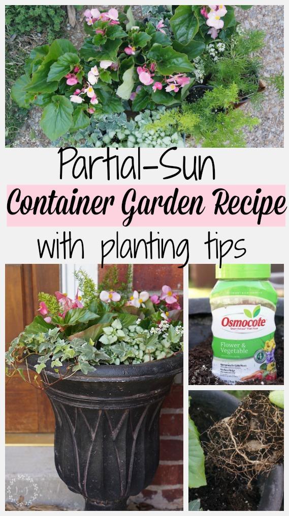 partial sun container garden