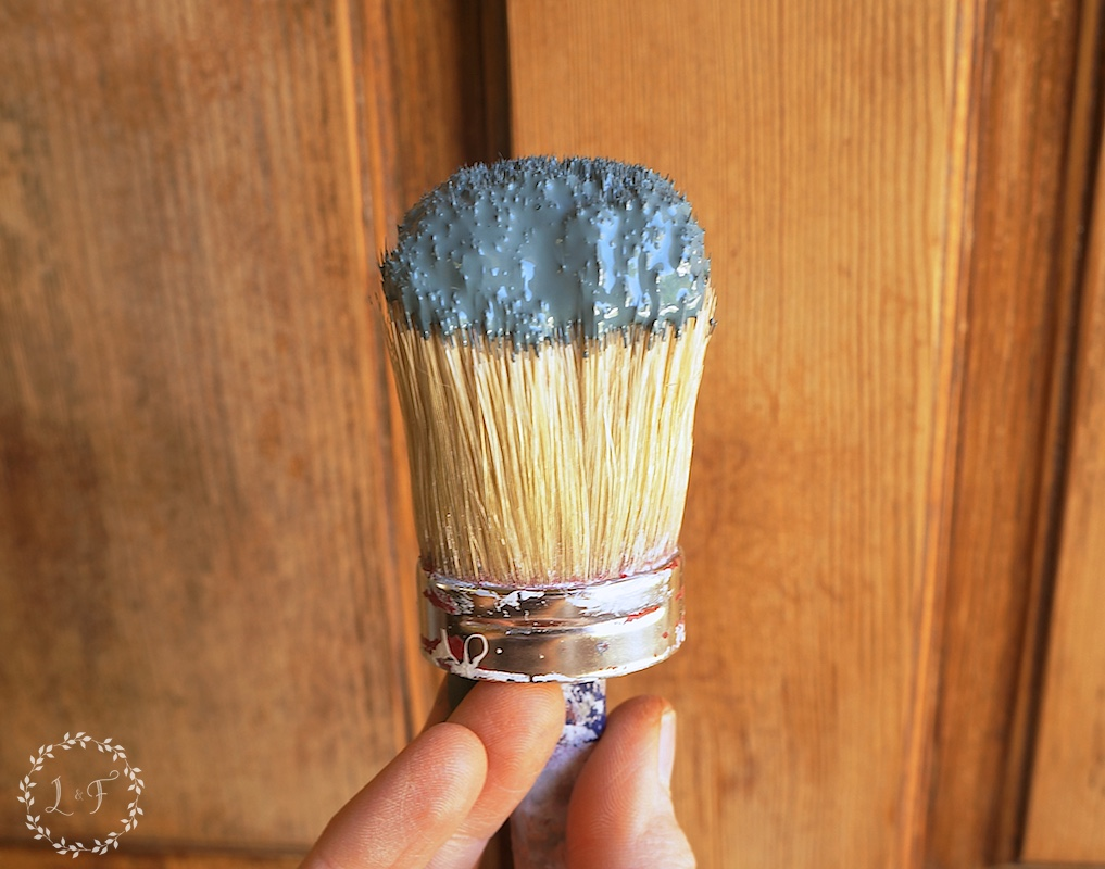 paint on brush