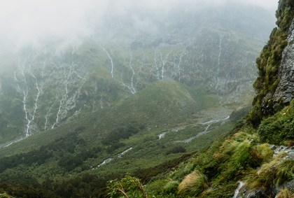 milford track, sound, new zealand, rain, hike, great walk, tramp