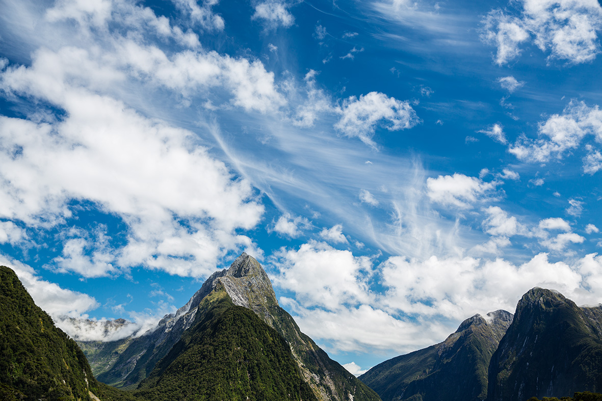 The complete guide to the milford track independent walk for The milford