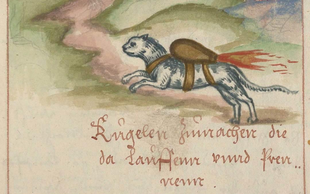 Rocket Cats in Medieval Siege Warfare