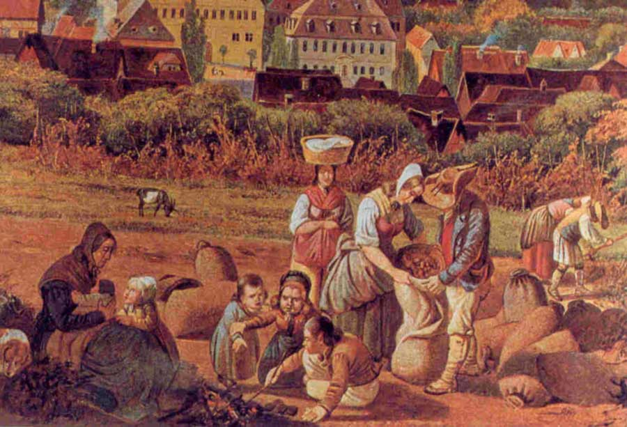 Image result for image medieval farmers
