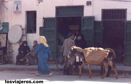 Mujer con Burro - Marruecos