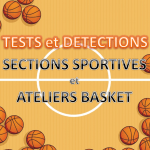 une detections sectionss