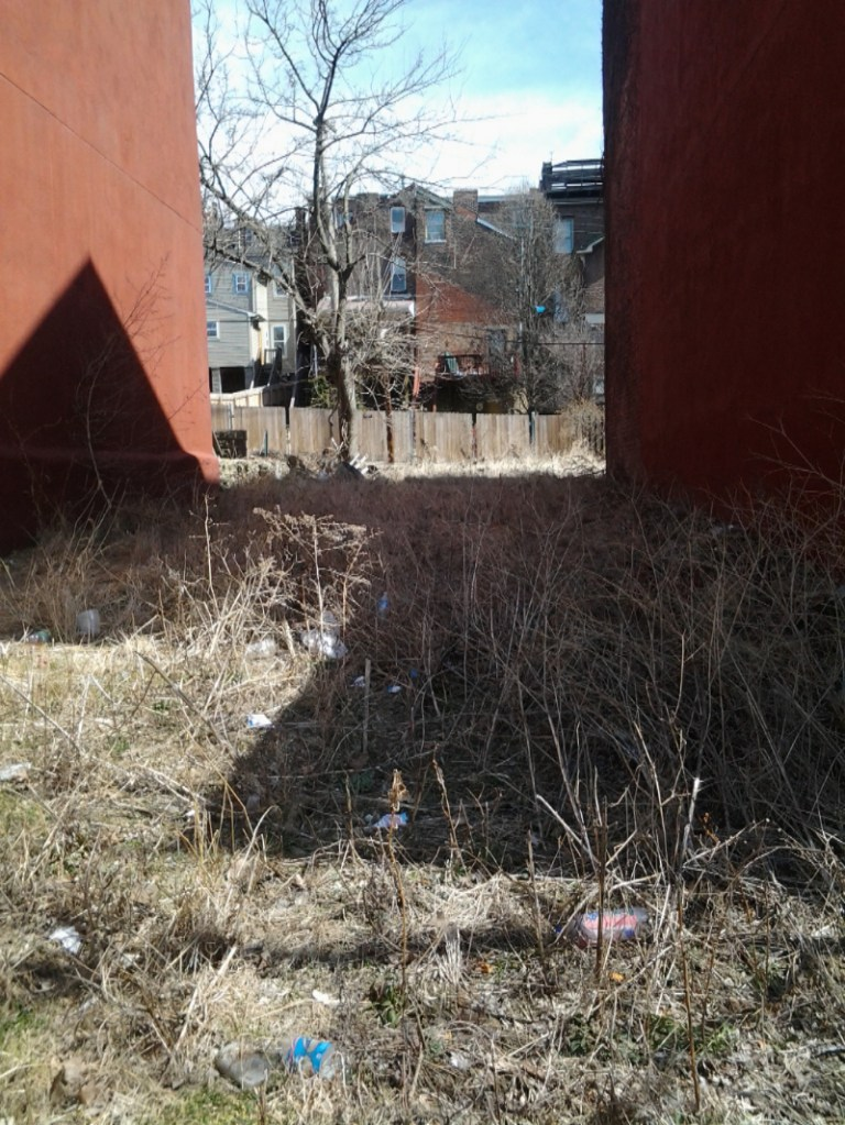 Litter in a vacant space between buildings