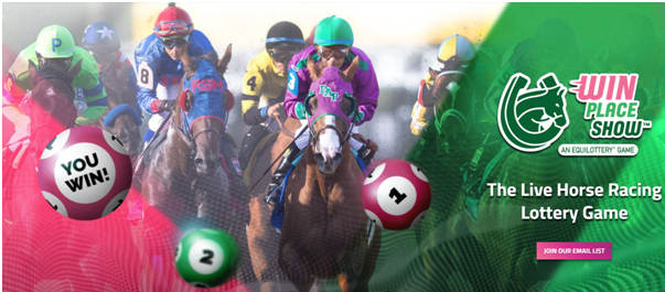 How to Play the Live Horse Racing Lottery Game from Equilottery?