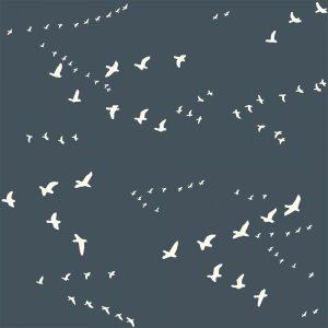 Bio-Baumwolle Birch Fabrics Birch Basics - Flight in dusk
