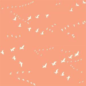 Bio-Baumwolle Birch Fabrics Birch Basics - Flight in peachy