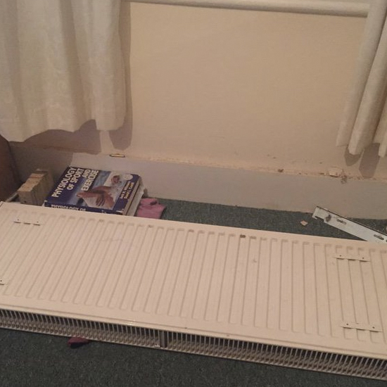 Hands up - not my radiator, but thought I'd throw in a visual representation I nicked off the internet. haha!