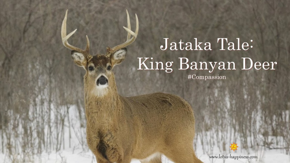 Jataka Tale King Banyan Deer Lotus Happiness