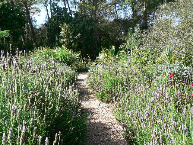 Jardines Lotus Mallorca SL