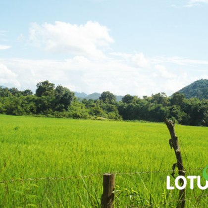 4 Days Luang Prabang Adventure