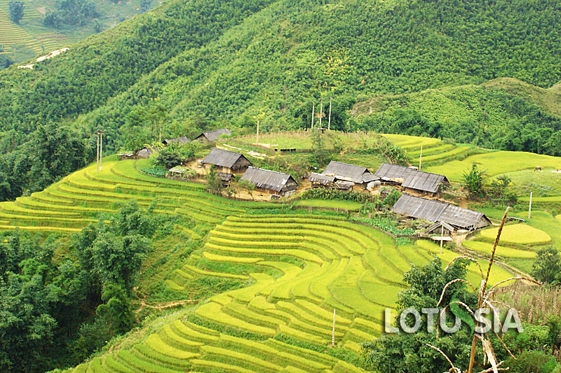 Best 9 Day Vietnam Family Holiday