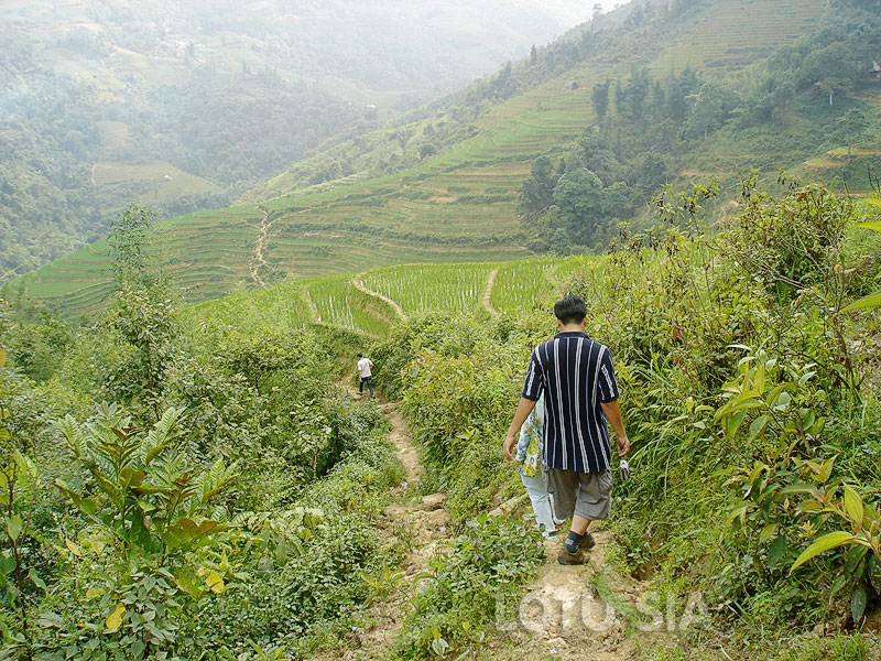 Best Sapa 2 Days 3 Nights Package