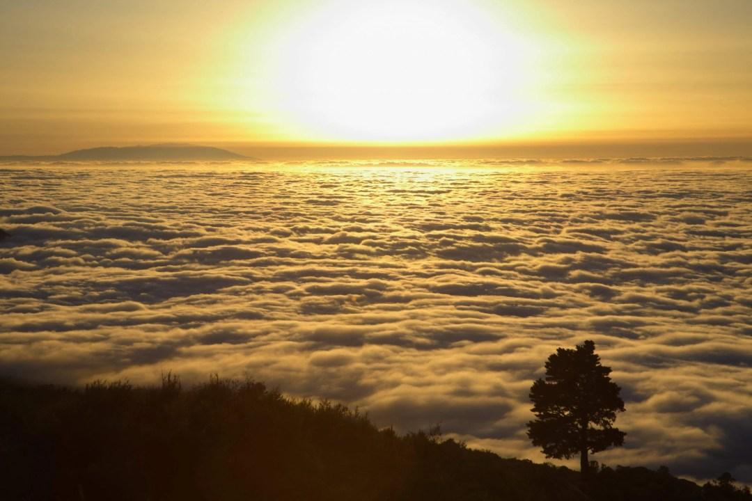 Krebs oder nicht? Bild: Sonnenuntergang über dichter Wolkendecke (cc) Rainer Wawrzik auf Pixabay