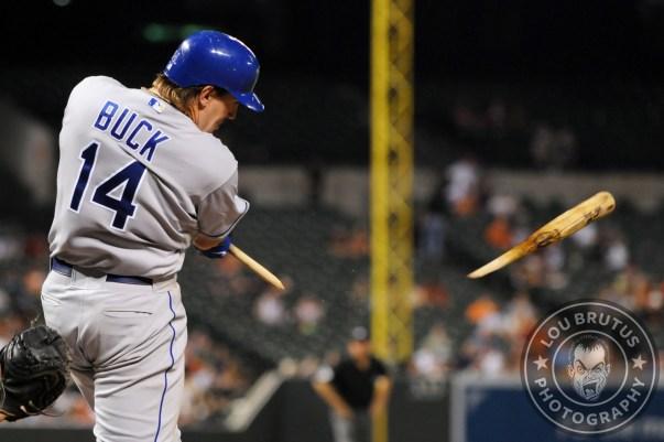 BRUTUS-MLB-17