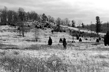 gettysburg2012 14