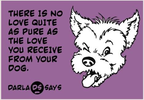 DARLA-SAYS-PURE-DOG-LOVE