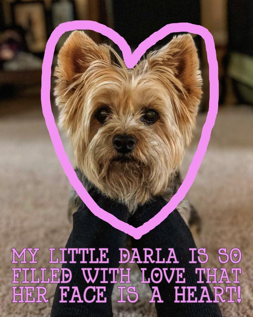 DARLA-HEART-VALENTINE