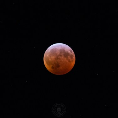 2019-lunar-eclipse-002-1-web