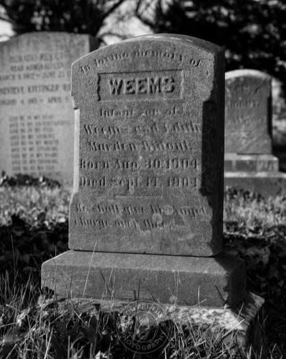 2019-graves-08-1-web