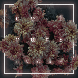 Colours – Ivory