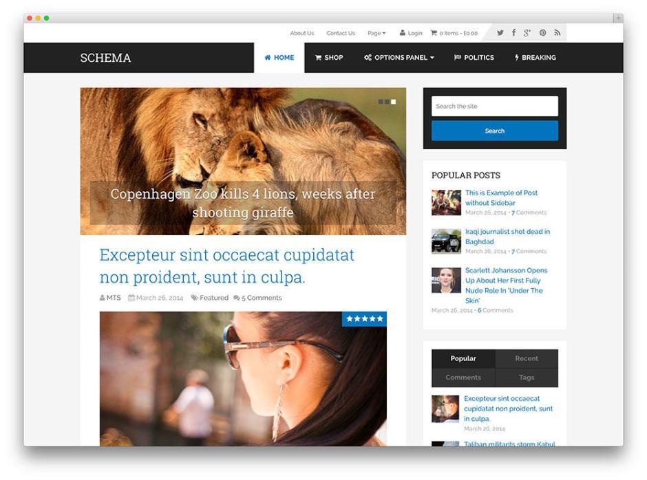 Schema SEO optimized wordpress theme for blogs