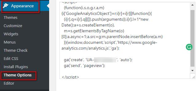 How to Add Google Analytic Through WordPress Theme