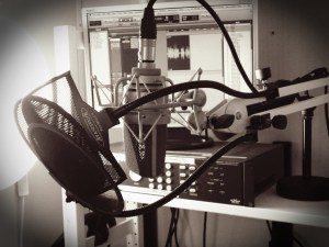Voiceover Studio Detail 5