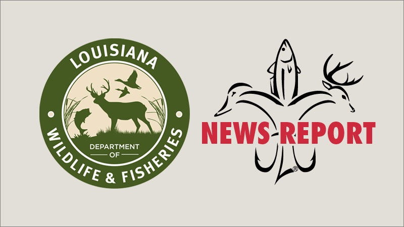 """LDWF extends public comment period on draft of """"Louisiana 2019 Flood Disaster Spend Plan"""""""