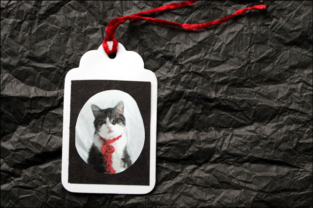diy-gift-tag-using-photogra