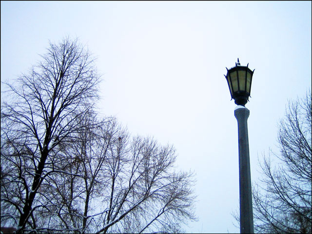 snowy-lamp-in-the-park