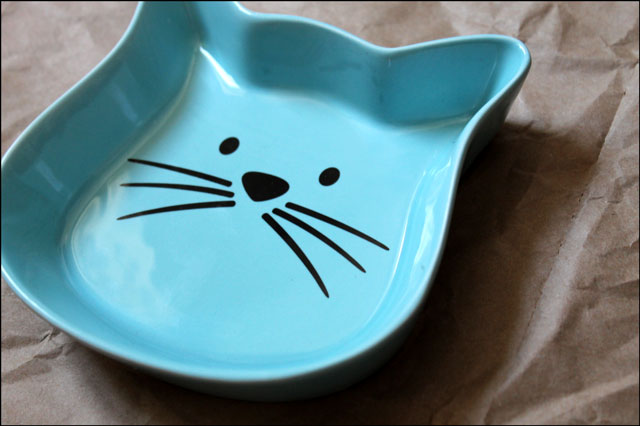 new-cat-food-dish