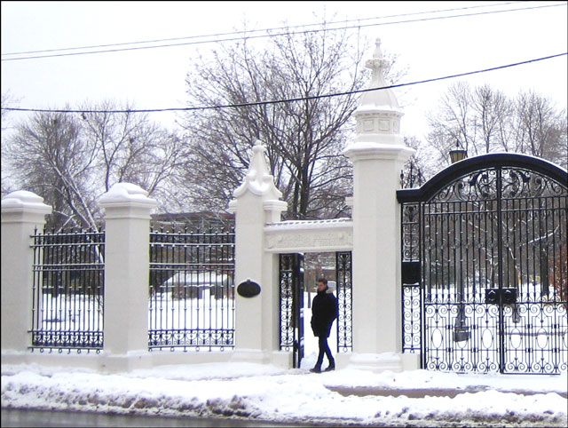 walking-through-trinity-bellwoods gate winter 2013