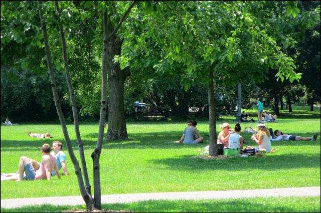 people-in-trinity bellwoods park