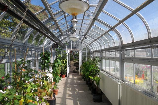 glass-hallway-allan-gardens