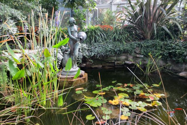 pond-in-allan-gardens-toronto
