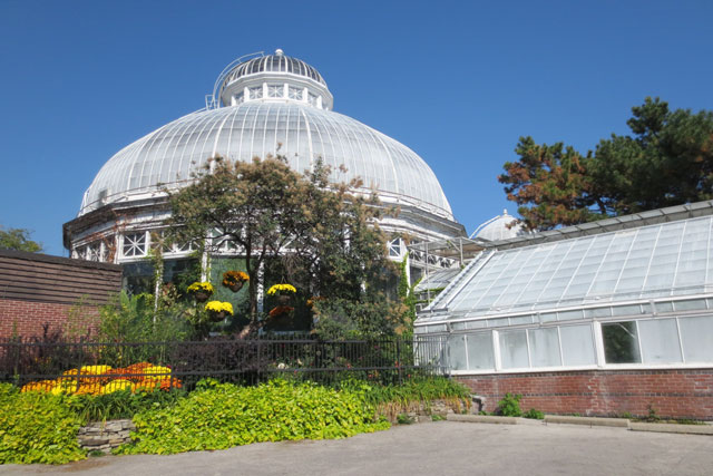 toronto-allan-gardens-greenhouse