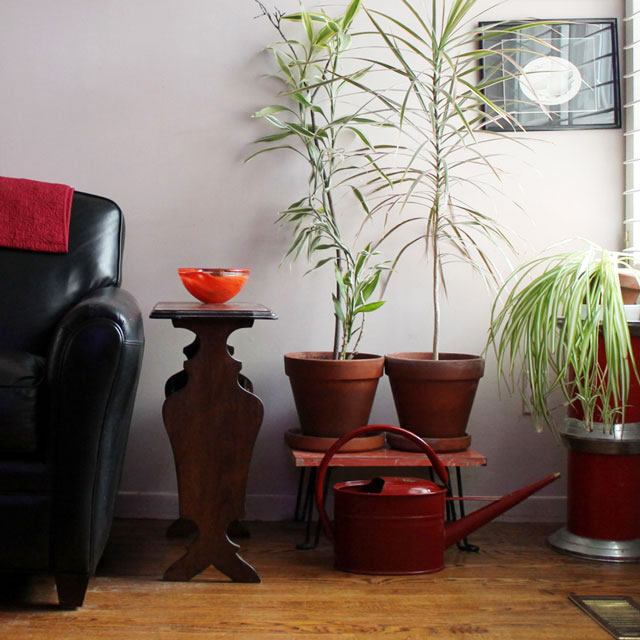 watering-can-in-living-room
