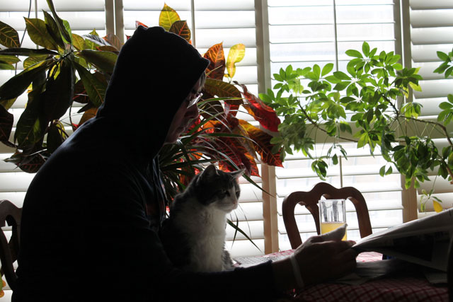 man-and-cat-reading-paper-01