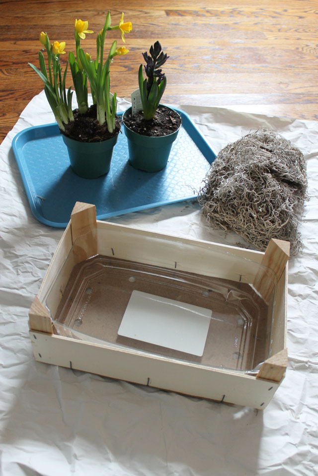 making-an-indoor-plantbox-from-an-orange-crate