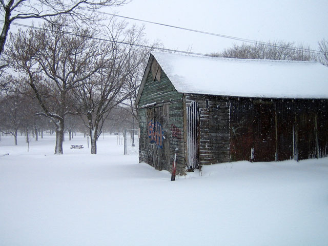 snowstorm-toronto-march-2014-06