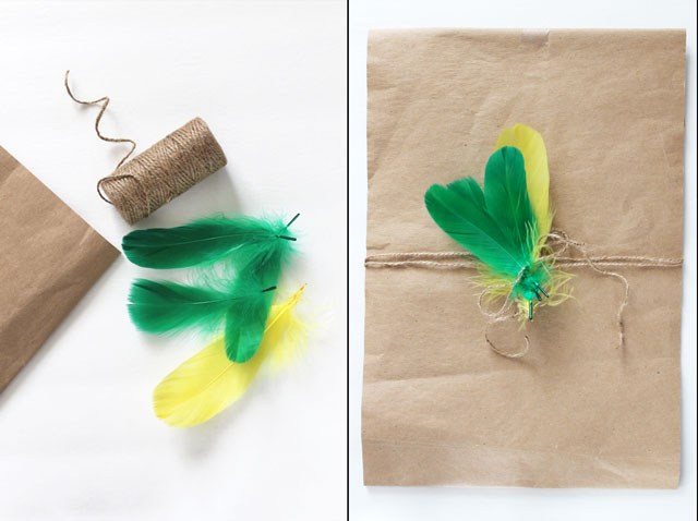 diy-gift-decoration-with-feathers